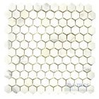 Stone Tiles by  Diamond Tech Glass Tiles - Mosaic Hexagon in White Statuary Honed Mesh Mounted Sheets
