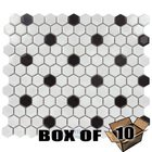 "Stellar Tile - Metro - 1"" Hexagon Porcelain Mosaic Tile in White with Black Dott"