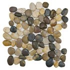 Stellar Tile - River Stone - Pebble & Stone Mosaic Tile in Multi